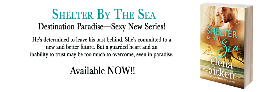shelterbythesea banner available